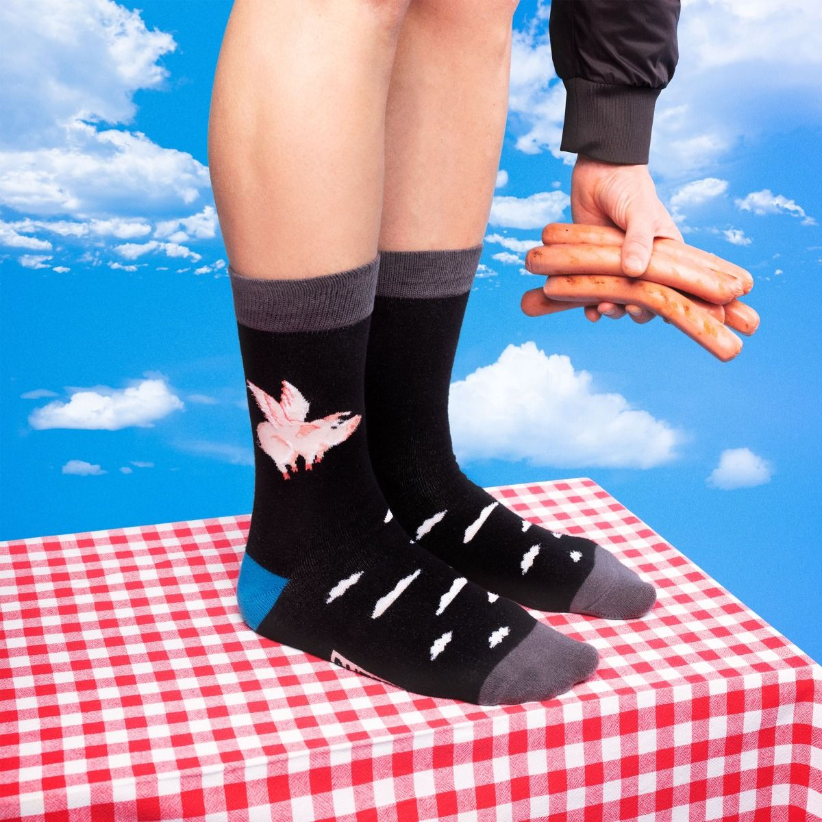TALES SOCKS FLYING PIG