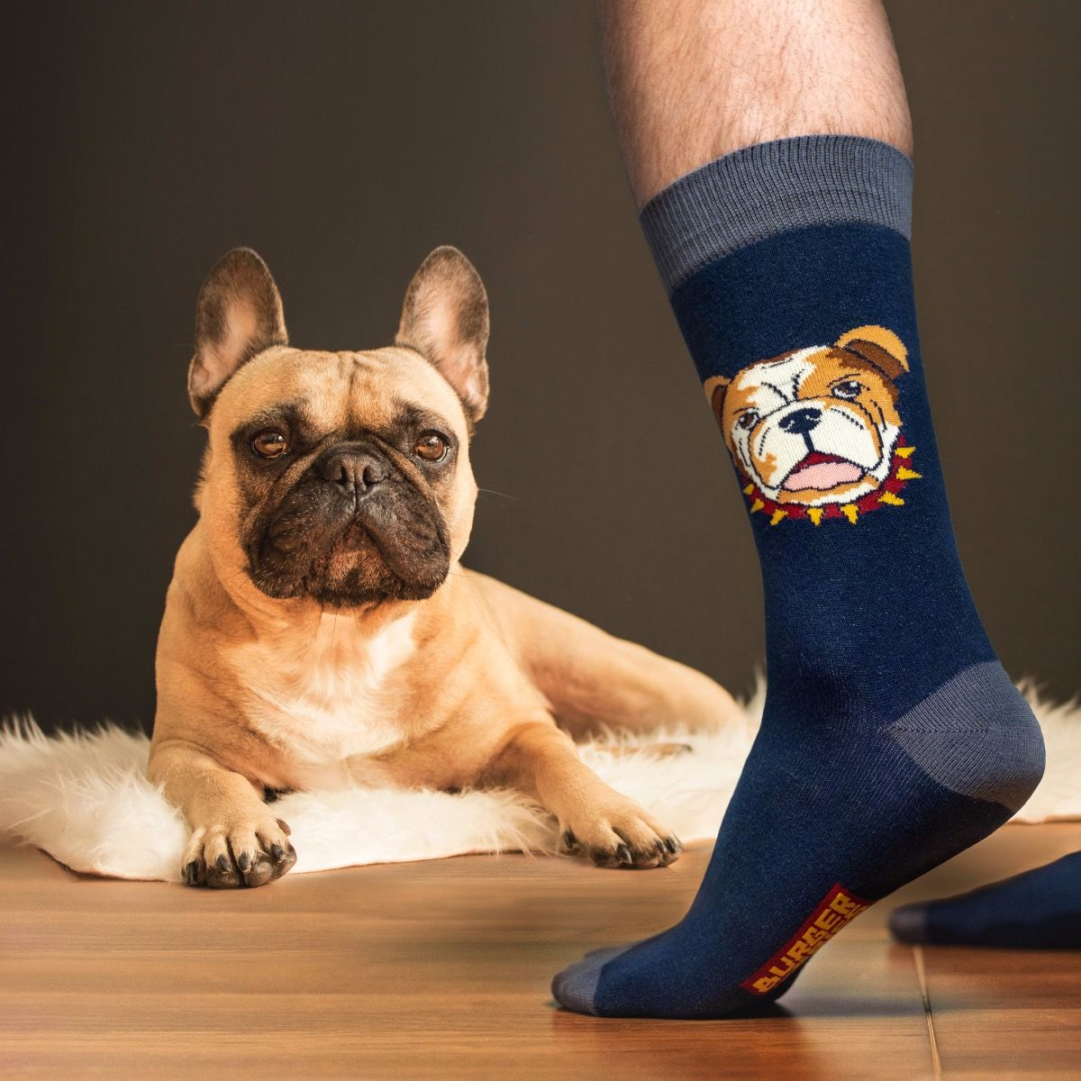 ANIMAL SOCKS JACK THE DOG